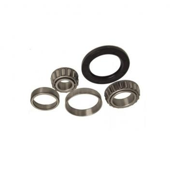 Sprag Type One Direction Clutch Bearing Bwc-13229