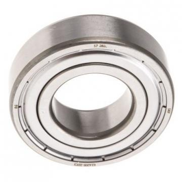 Lm501349/Lm501314 (LM501349/14) Tapered Roller Bearing for Vibration Platform Clothing Production Equipment Reducer Electric Drum Hand Grinder Mineral